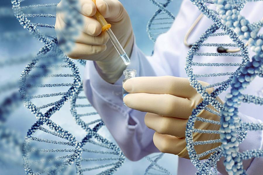 Лечение рака: ученые обнаружили гены, управляющие ростом опухолей
