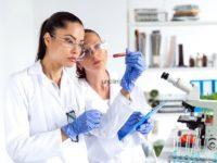 Регуляция кроветворения: механизмы и важные факторы