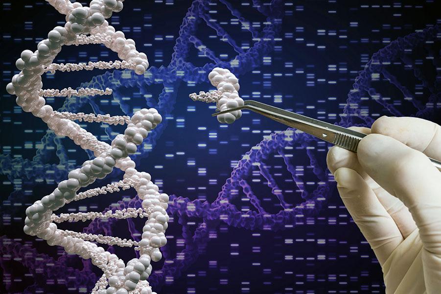 Удаление одного гена предотвращает рак поджелудочной железы