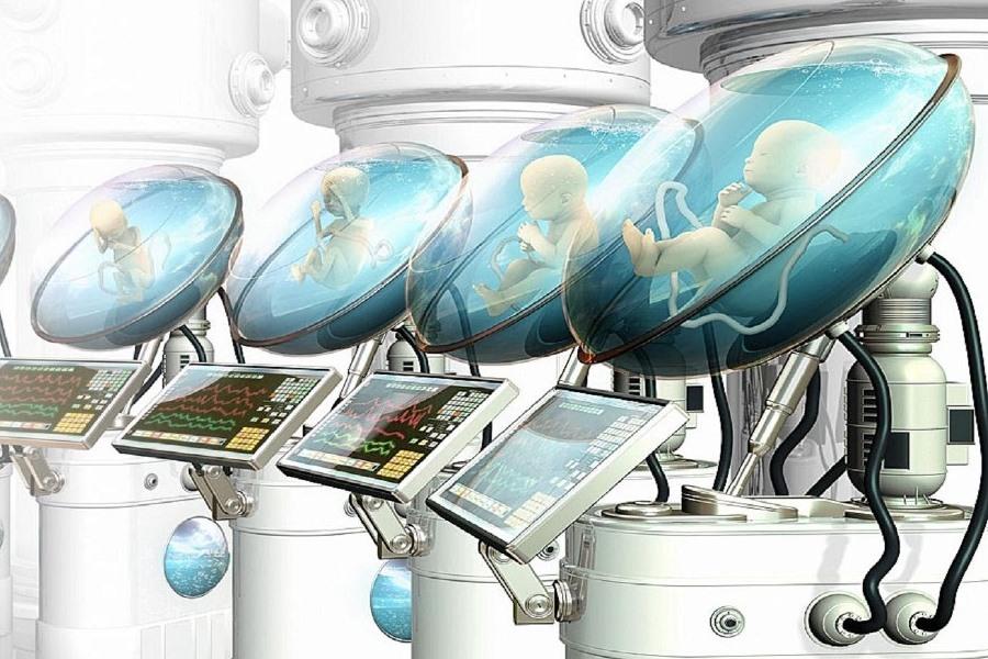 В Европе напечатают прототип матки