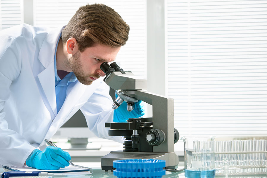Ученые выяснили, что яйцеклетка во время оплодотворения занимает активную позицию