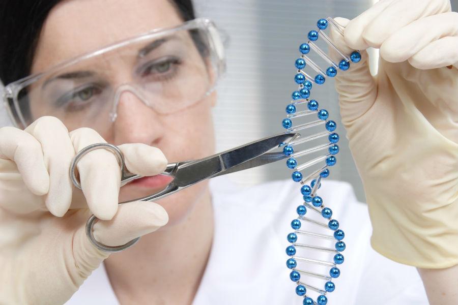 Генетический отбор