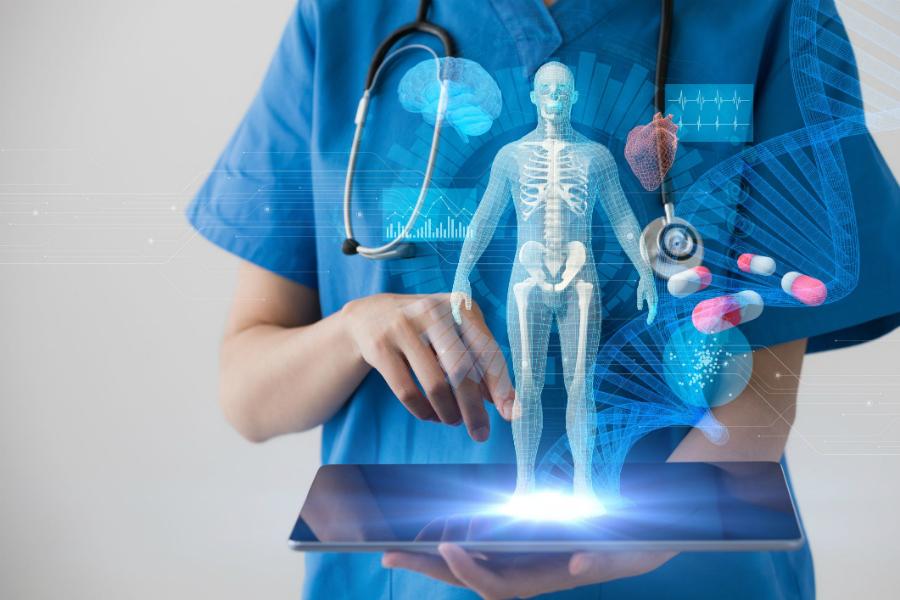 В США смоделирована платформа для тестирования лекарств, имитирующая организм человека