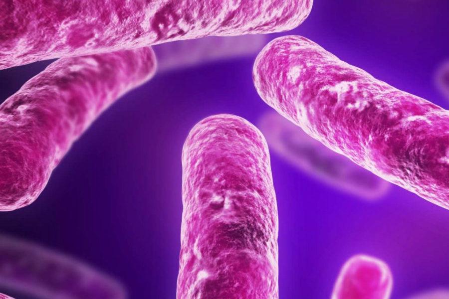 Венерическая лимфогранулема - фото