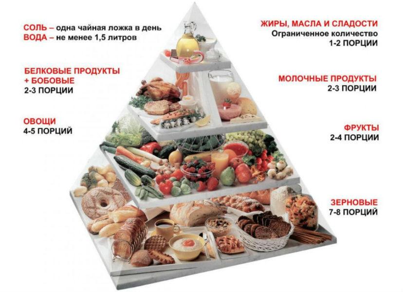 Белок в пищевой пирамиде