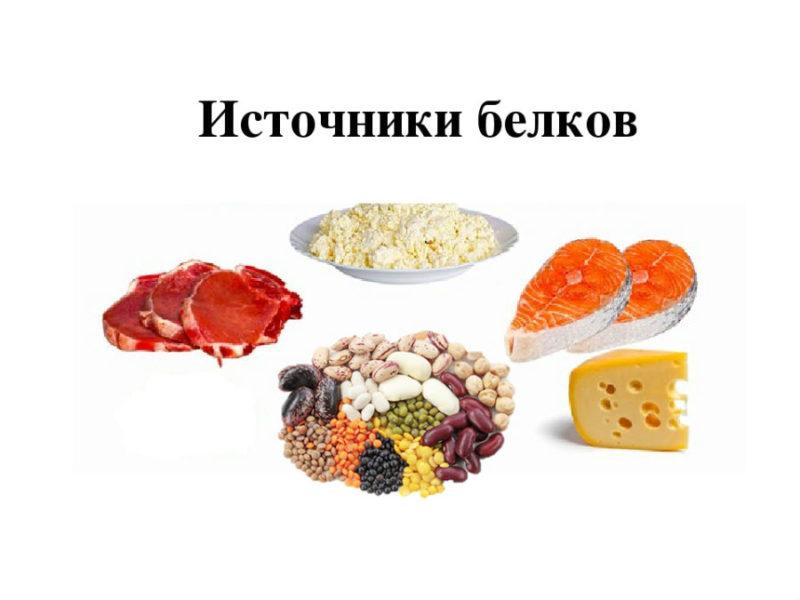 Источники белков в продуктах