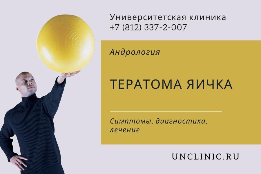 Тератома яичка